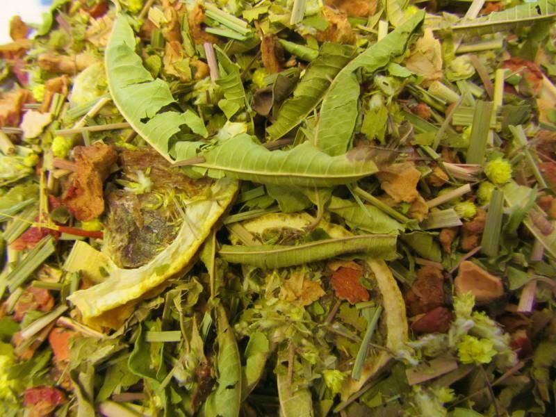 Mistral - Tee ohne zusätzliche Aromastoffe